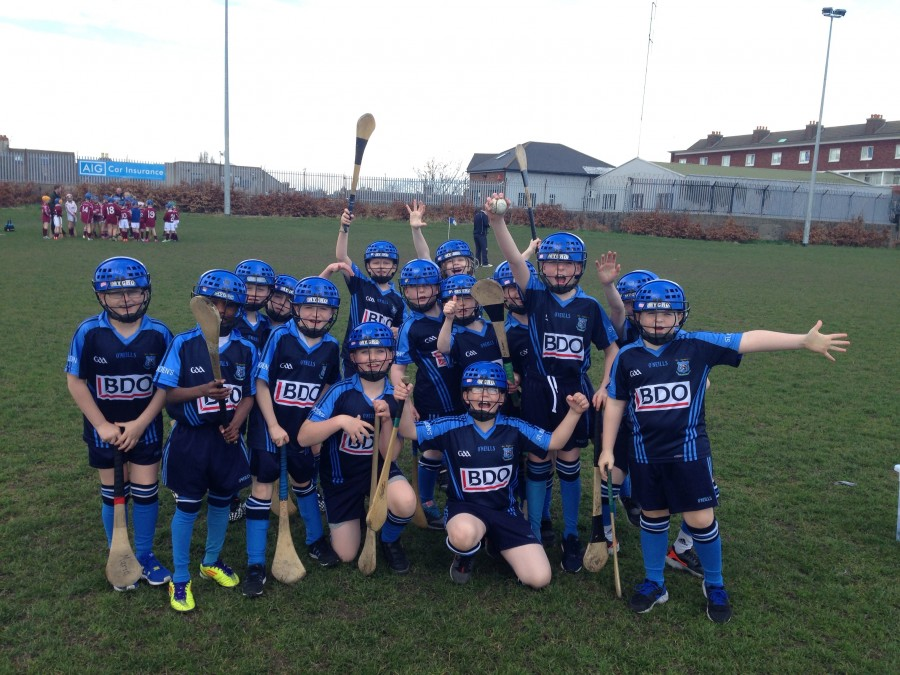 Hurling: St Audoen's V St  James'