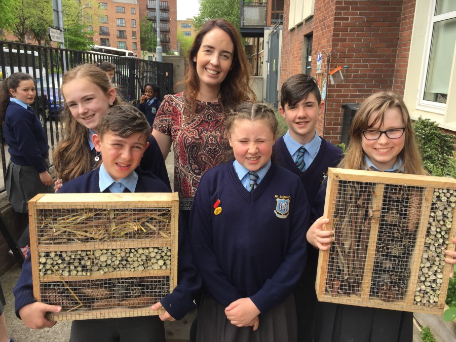 Green School: Our Insect Hotels